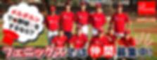 メルボルン 野球 草野球 軟式野球 日本人 チーム 軟式 募集中 メンバー フェニックス キャッチボールBaseball Melbourne Japanese
