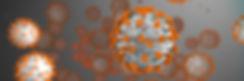 covid-19_banner_a_1920x640-07109844_9.jp