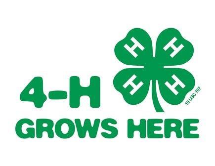 Discover 4H Registration Open