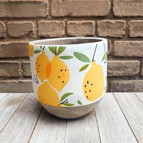 Les Citrons 5.5''