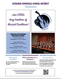 CFSD Orchestra Flyer 2019.png