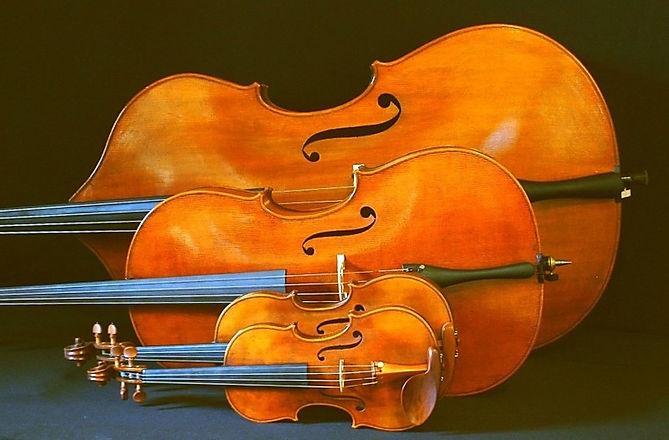 String Instruments - bass, cello, viola, violin-1.jpg