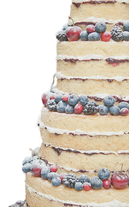 Naked Winter Berry Wedding Cake