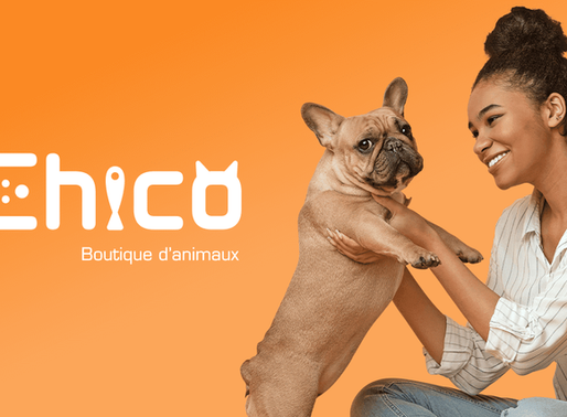 Boutique d'animaux Chico :un succès local grandissant!