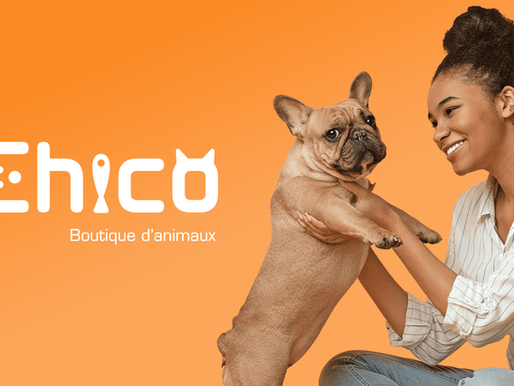 Boutique d'animaux Chico :un succès local grandissant!