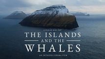 The Island and the Whales (2016)