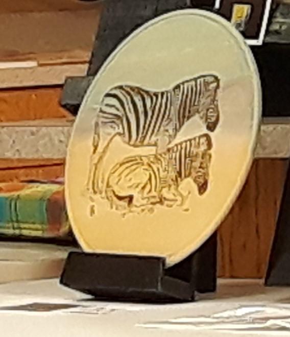 Pat Bell's zebras