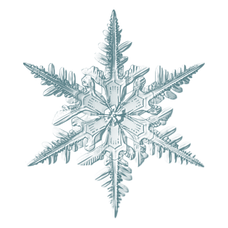 kisspng-snowflake-image-microscope-photo