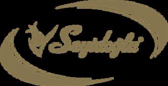 seyidoglu-logo-A1305DD0D0-seeklogo.com.p