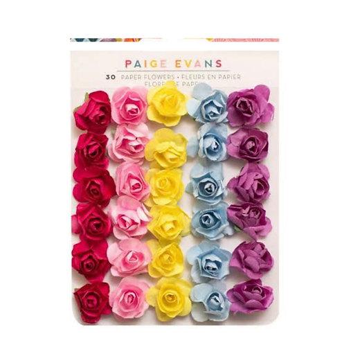 Wonders- Paper Flowers