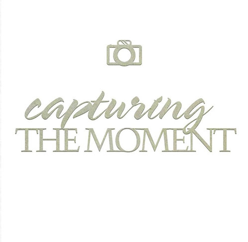Capturing The moment Sentiment Chipboard