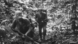 Royal Marines in Borneo - 1962 - 1966