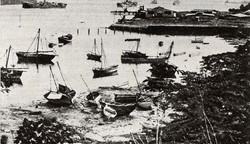 Landings in Sadani - East Africa 1916