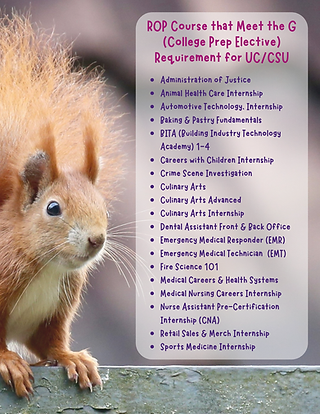 _UCCSU approved courses.png