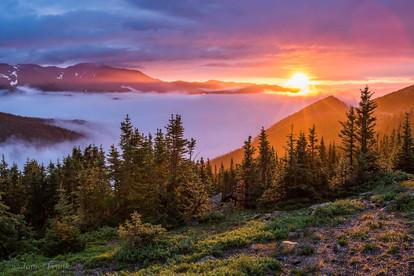 296 Subalpine Sunrise