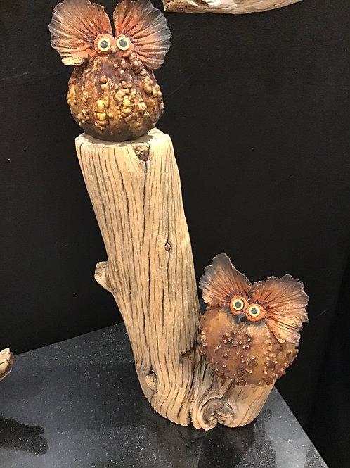 Warty Owls On Pirch