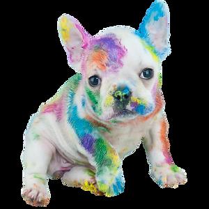puppy_week_1080x1080.png