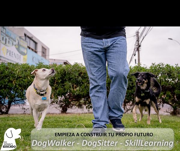Curso de Servicios Caninos.png