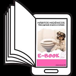 libro_ebook.png