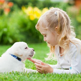 cachorro_niña.jpg