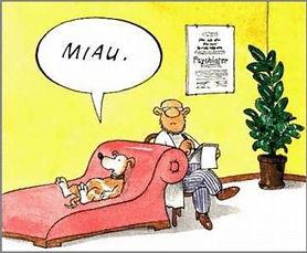 psicologo-de-perros.jpg