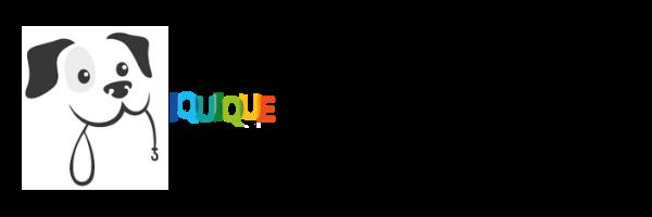 iquique_camina.png