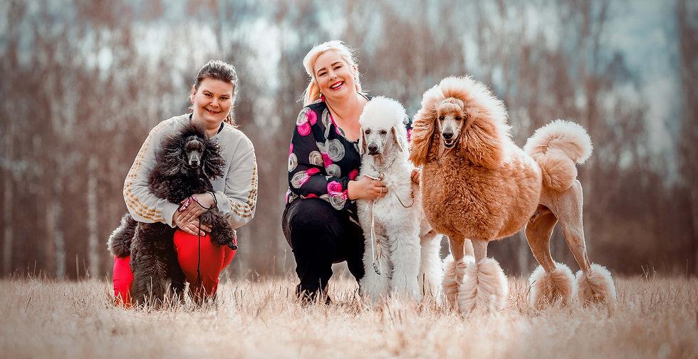 Sievän koirapalvelut - Hyvän mielen koirankoulutusta ja näyttelytreenejä Helsingissä!