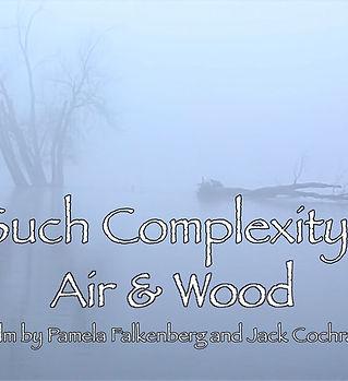 Such ComplexityAir & Wood.jpg