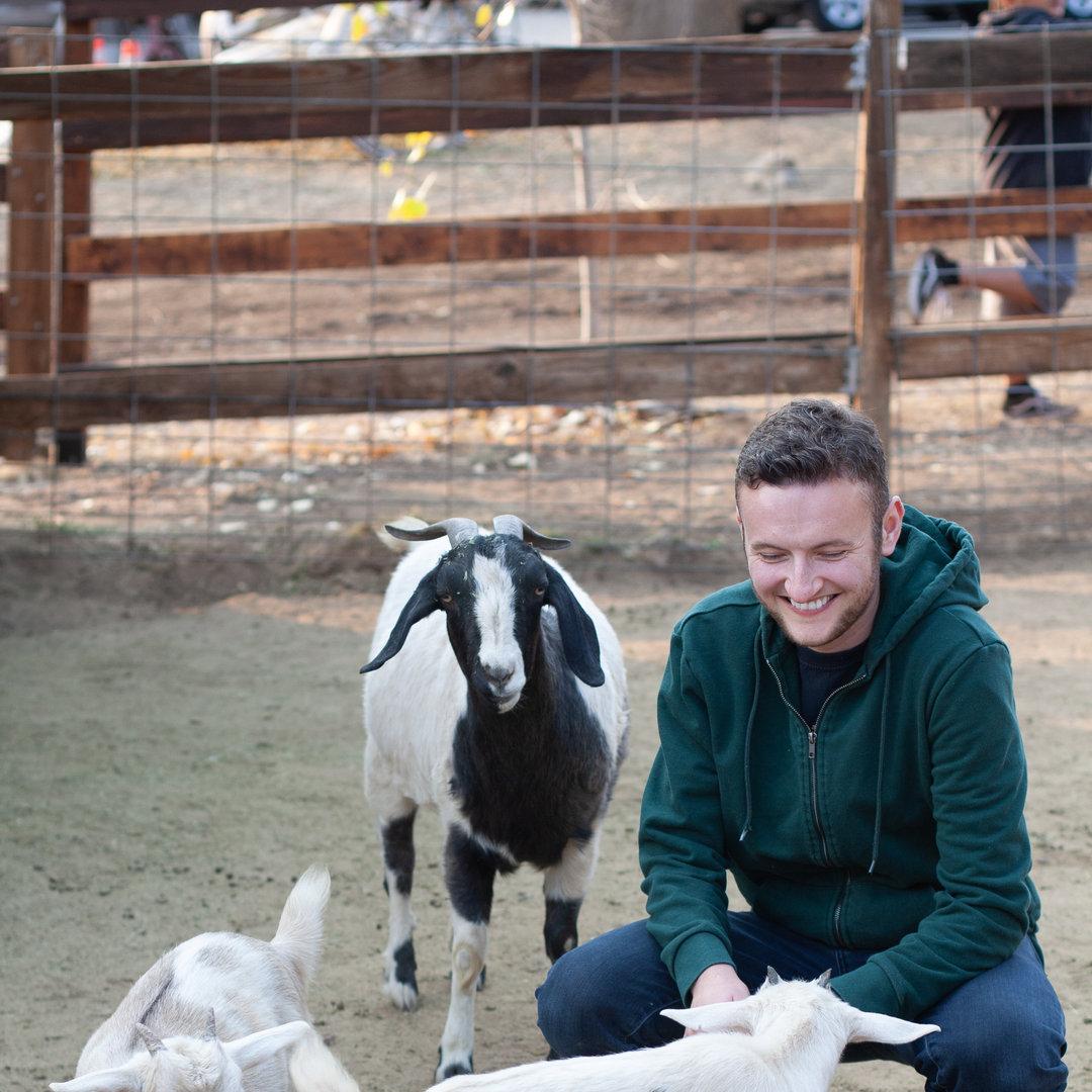 The goats say hi!
