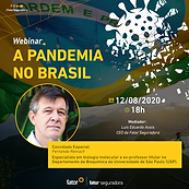A-Pandeimia-no-Brasil-feed.png