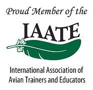 IAATE Member Logo.jpg