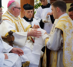 NZ Ordinations 9 - Manus Tergium 1.jpg