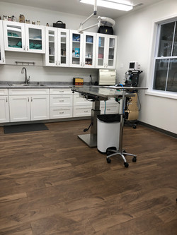 Large surgical suite