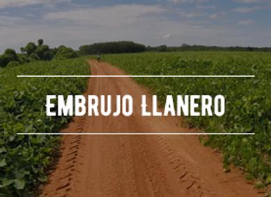 Embrujo Llanero - Piloto + Pasajero