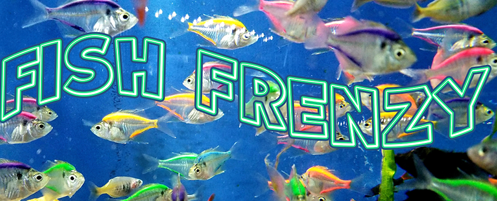 FishFrenzy.png