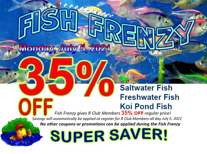 fishfrenzygoogle.jpg