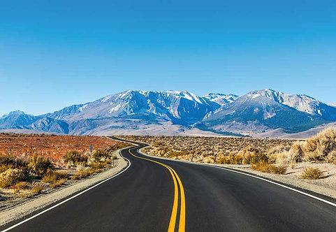 5301-4P-1 Road Trip USA