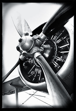 1W Aviator-TP001