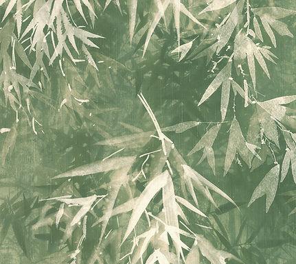 Lymphae 18603