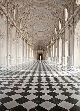 861 Palace of Venaria