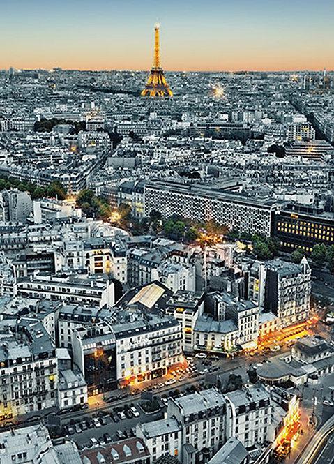 434 Paris Aerial View
