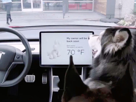 Tesla 發佈 「狗狗模式」 (Dog mode)