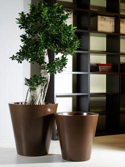 Office Plants Interior Plant Displays (10)
