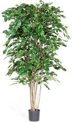 Artifical Plants for Offices Funky Yukka (51)