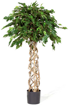 Artifical Plants for Offices Funky Yukka (47)