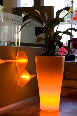 Illuminated Pots