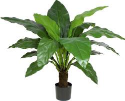 Artifical Plants for Offices Funky Yukka (29)