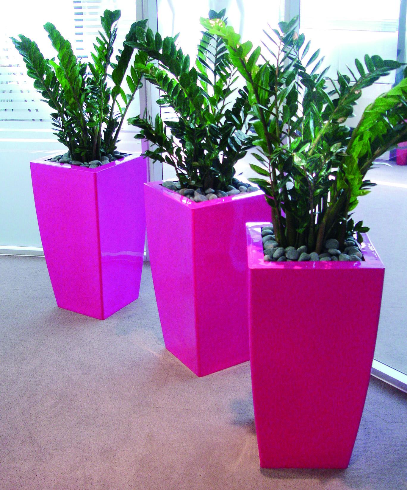 Glossy Pink