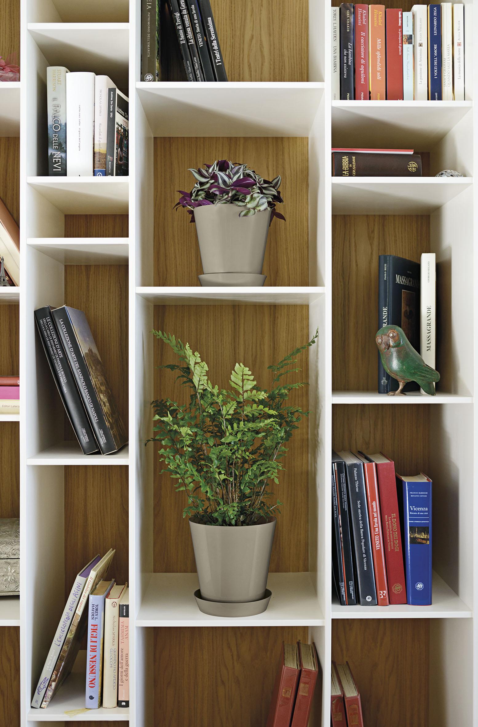 Office Plants Interior Plant Displays (4)