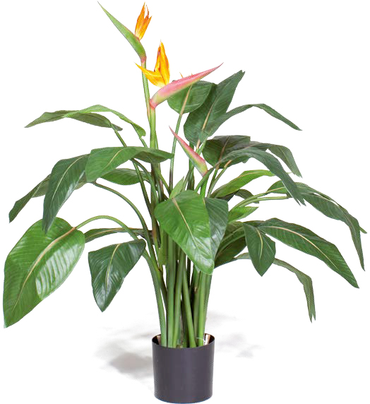 Artifical Plants for Offices Funky Yukka (3)